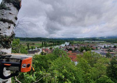 Bergriedhof Kadelburg