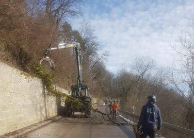 Verkehrssicherungshieb an der Küssaburg mit Forstbetrieb Baumgartner (1)