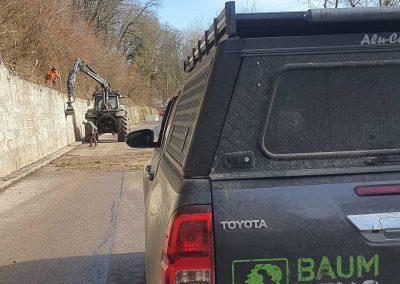 Verkehrssicherungshieb an der Küssaburg mit Forstbetrieb Baumgartner